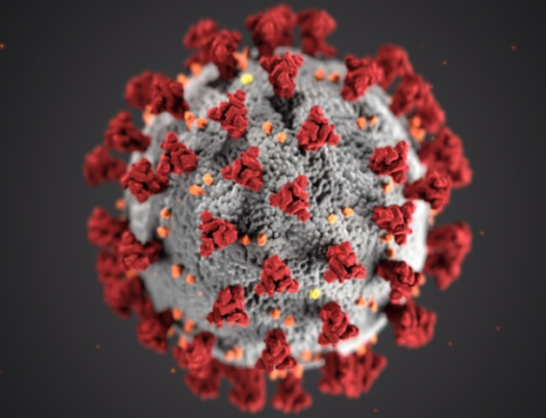 Coronavirus and data protection